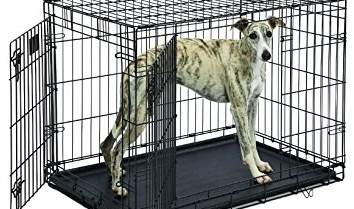 Greyhound Dog Crate