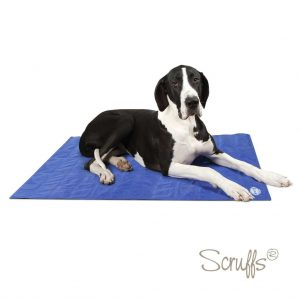 Dog cool mat